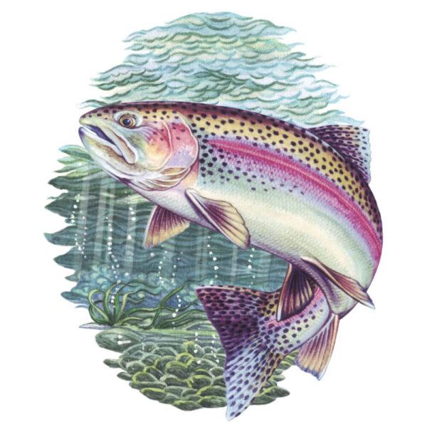Simon Lucas Score Pad - Rainbow Trout